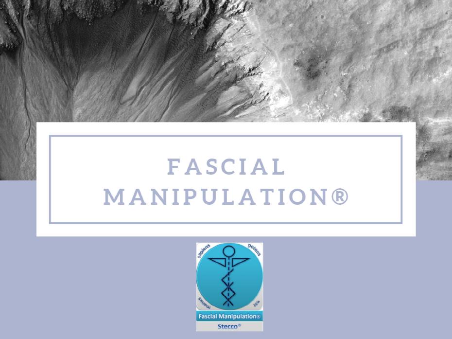크기변환_Fascial manipulation ® 2A_B.png