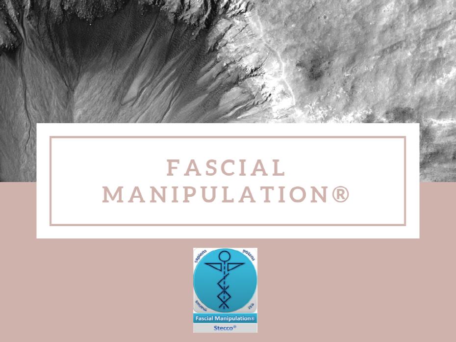 크기변환_Fascial manipulation ®.png